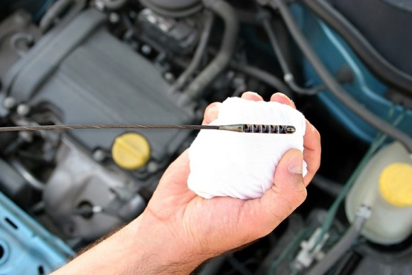 how to check fluids in your car