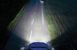 How do you get a proper aiming headlight alignment?