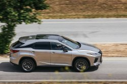 2020 Lexus RX is just hot and fresh, check its sleek lines here!
